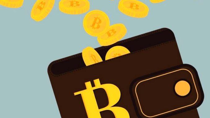 wallet cripto coin 3